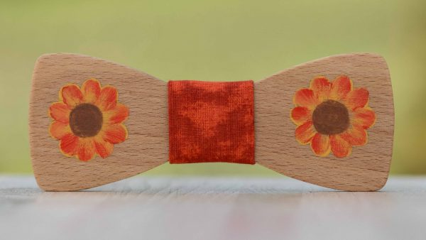 malovany-dreveny-motylik